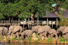 Sabi Sabi Game Reserve Lodges