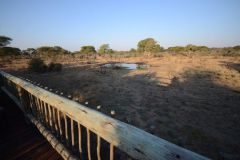 Chobe Bush Camp